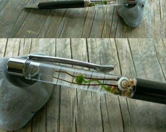 WEEKEND SALE - Marimo Moss Ball Pen - Live Plants - Terraripen - Custom - Terrarium Pen