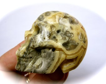 Crazy Lace Agate Carved Crystal Skull 48mm 86g