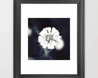 Beautiful Flower,Printable Photography,Home Decoration,Instant Download,Minimalist Photography