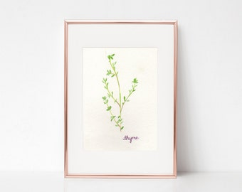 Thyme Print - Watercolor Herbs - Watercolor Thyme Print - Herb Print - Watercolor Kitchen Decor - Watercolor Kitchen Print