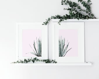 Set of 2 Cactus Watercolour Prints, Botanical Leaf Print, Green Leaf Prints, Plants on Pink Print, Wall Art, Contemporary, Nature Print