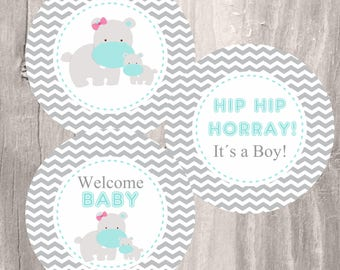 Baby Shower Printable Centerpieces, Gray and Teal Hippos Centerpieces, Instant Download, Hippos Party Circles, Boy Baby Shower Decoration