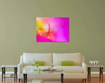 Flower Macro Print, Floral Print, Botanical Print, Nature Photo, Flower Photography, Pink Flower Art, Flower Wall Decor, Nature Wall Art