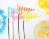 Set of FOUR large pennant flags. Blue. Pink. Orange. Yellow. Gingham flags. Gingham pennant flags. Pink Gingham. Blue Gingham. Yellow flag.