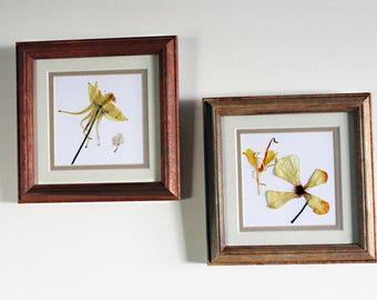 Custom framing samples for your own design