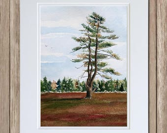 Pine Tree on the Barrens - Original Maine Landscape Painting - Blueberry Barrens in Fall - Beth Whitney Watercolor Art