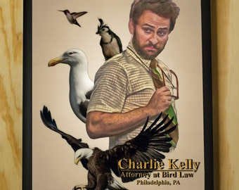 Charlie Kelly: Attorney at Bird Law - Wall Art - Color Pencil Portrait Poster Print