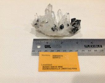 Wonderful crystals of Hubnerite and clear Quartz from Mundo Nuevo Mine Peru.