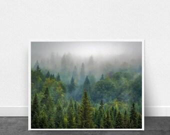 Forest Print Landscape Photograph Fog Green Wall art Trees art print Minimalist art Nordic Minimalism Scandinavian art Nature Mountains Boho