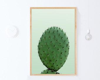 Green Cactus Art Print, Plant Print, Large Botanical Print INSTANT DOWNLOAD Printable Art, Green Wall Art, Photography, Plant Poster 24x36