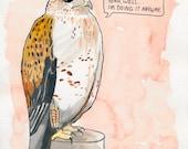 The Ferruginous Hawk
