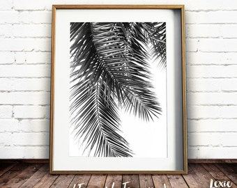 Palm Tree Print, Black and White Palm Tree, Tropical Print, Palm Leaves, Palm Tree Photo, Palm Tree Poster, Palm Leaf Print, Printable Art