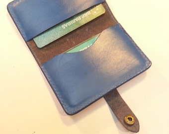 Credit card portfolio format
