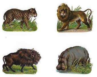 12 Victorian Animals: Die Cut Scrap, Zoo Menagerie