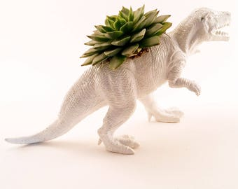 T-Rex Dinosaur Planter + Succulent \\ Succulent Planter \\ Home Decor \\ Gift \\ Office Decor \\ Desk Plant