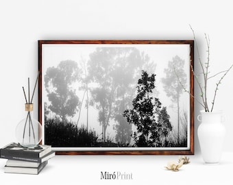Tree Print, Forest, Landscape Art, Black and White Photography, Nature Wall Art, Forest Print, Wilderness Poster, Woodland Print, Modern Art