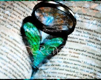 Book Art,Books,Art with Hearts,Giclee Print,Heart,Art with Text,Heart Chakra,Photograph,Word Art,Green,Romantic Art,Romance,Anniversary Gift