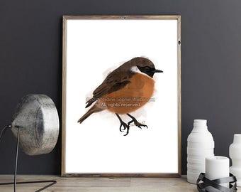 Bird Print, Animal Print, Living Room Wall Art, Kitchen Decor, Large Wall Art, Bedroom Wall Art, Bird Wall Art, Nursery Wall Art, Bird Art