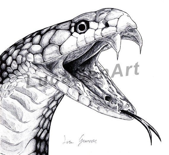Serpente cobra disegno fatto a mano download immediato - Dessin de serpent cobra ...