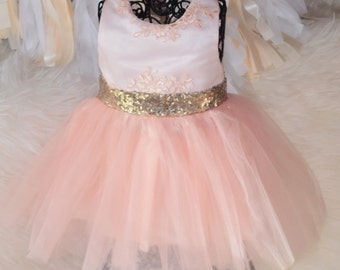 Blush Couture Dress Special Occasion