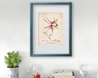 Botanical decor, Home decor, Botanical art print, Botanical print, Wall art, Vintage botanical, Floral art, Botanical poster, Botanical art