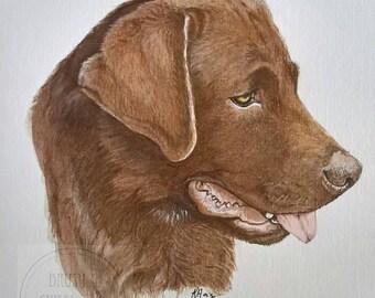 Pet portrait, custom handpainted dog portrait