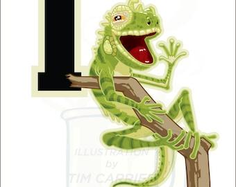 I is for Iguana : Animal Alphabet