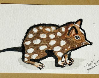 Quoll drawing pen and ink original art unique spotted mouse-like creature Australian marsupial