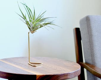 Air Plant Stand, Brass