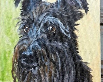 "Small Pet Portrait Oil Painting, 5"" x 7"""