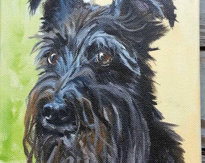 "Small Pet Portrait Oil Painting, 5"" x 7"""