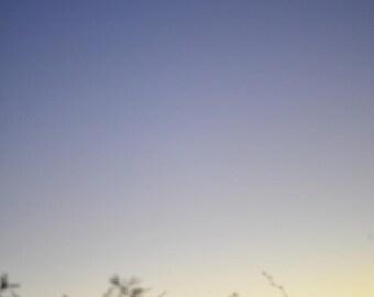 Photograph Print - Sunset to Moon Rise, Big Bend National Park TX - dusk moon night sky sunset sun silhouette crescent blue desert brush