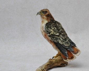 Needle Felted  Bird - Needle felted Red Tailed hawk -Wild Bird - Felt bird - Bird Lovers - Bird made to your order
