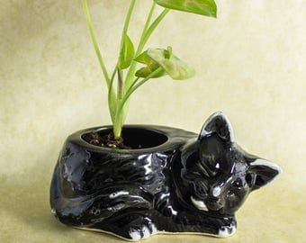 Tuxedo Kitty planter, black white modern planter ceramic succulent planter, handmade pottery planter, plant pot, cat lover gift gardening
