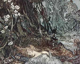 Titania Lying Asleep, Arthur Rackham, Vinatge Art Print
