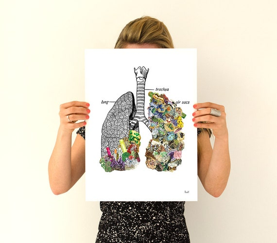 Human Lungs  with precious stones , Human Anatomy wall art print prints, wall art gifts for doctor  wall art, SKA120WA3