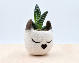 Planter / Succulent planter / Siamese cat mini planter / Head cat planter / indoor planter / Small succulent pot / cat lover gift for her