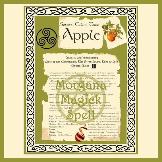 Apple Sacred Celtic Tree