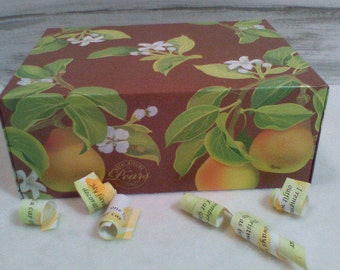 "Fruit Tree Mother's Day Gift, Memory Box, Birthday Anniversary ""Growing up ME!  Memory Compendium©"" RoadSideBoutique Mary Lynn Savko"