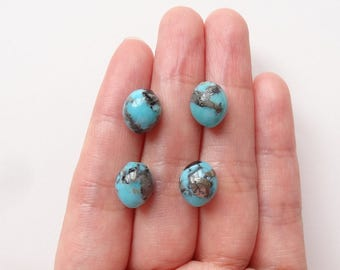 Blue Campitos Turquoise Mini Half Drilled Smooth Acorn Drops 8.5x10 mm One Pair G6667