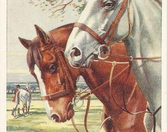 Whydale Hunters - Vintage 1930s Artist-signed Fox Hunt Horses Postcard