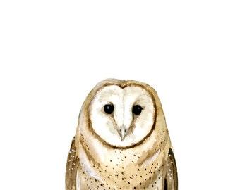Barn Owl Watercolor Giclee Print