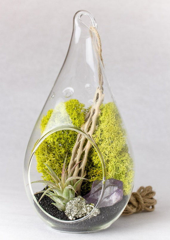 Hanging Teardrop Terrarium Kit Amethyst Crystal Point + Pyrite || DIY || February Birthstone || Gifts for the Gardener