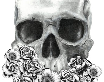 Skull and Rose pen and charcoal print