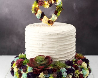 cake topper and cake stand | Succulent cake topper | succulent cake stand | Light up cake accessories | marquee lights