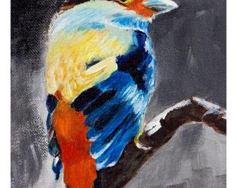Print-Bird print, robin bird, robin art, animal art, little bird art, birds art, wall art print, wall decor, nature art, fun art,