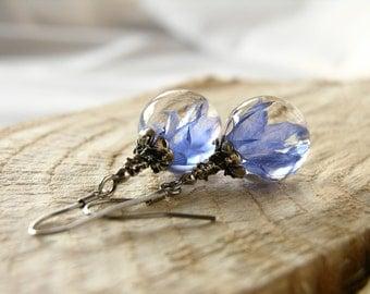 Little Blue Petals Earrings, Resin Earrings With Real Cornflower Petals, Resin Earrings With Real Flower