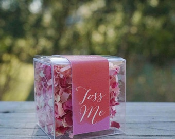 Wedding Confetti Boxes // Soft Pink