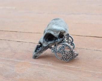 Silver Bird Skull Ring