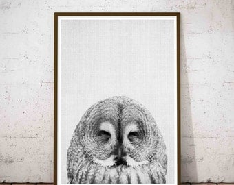 Owl Print, Funny Bathroom Decor, Woodland Nursery Wall Art, Forest Animal Wall Decal, Baby Shower Gift, Baby Animal Print, Kids Large Poster